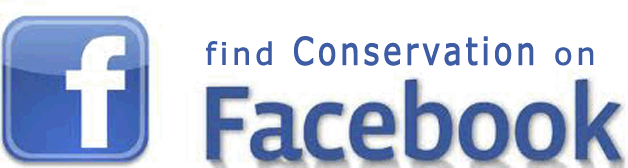 Find Conservation on Facebook
