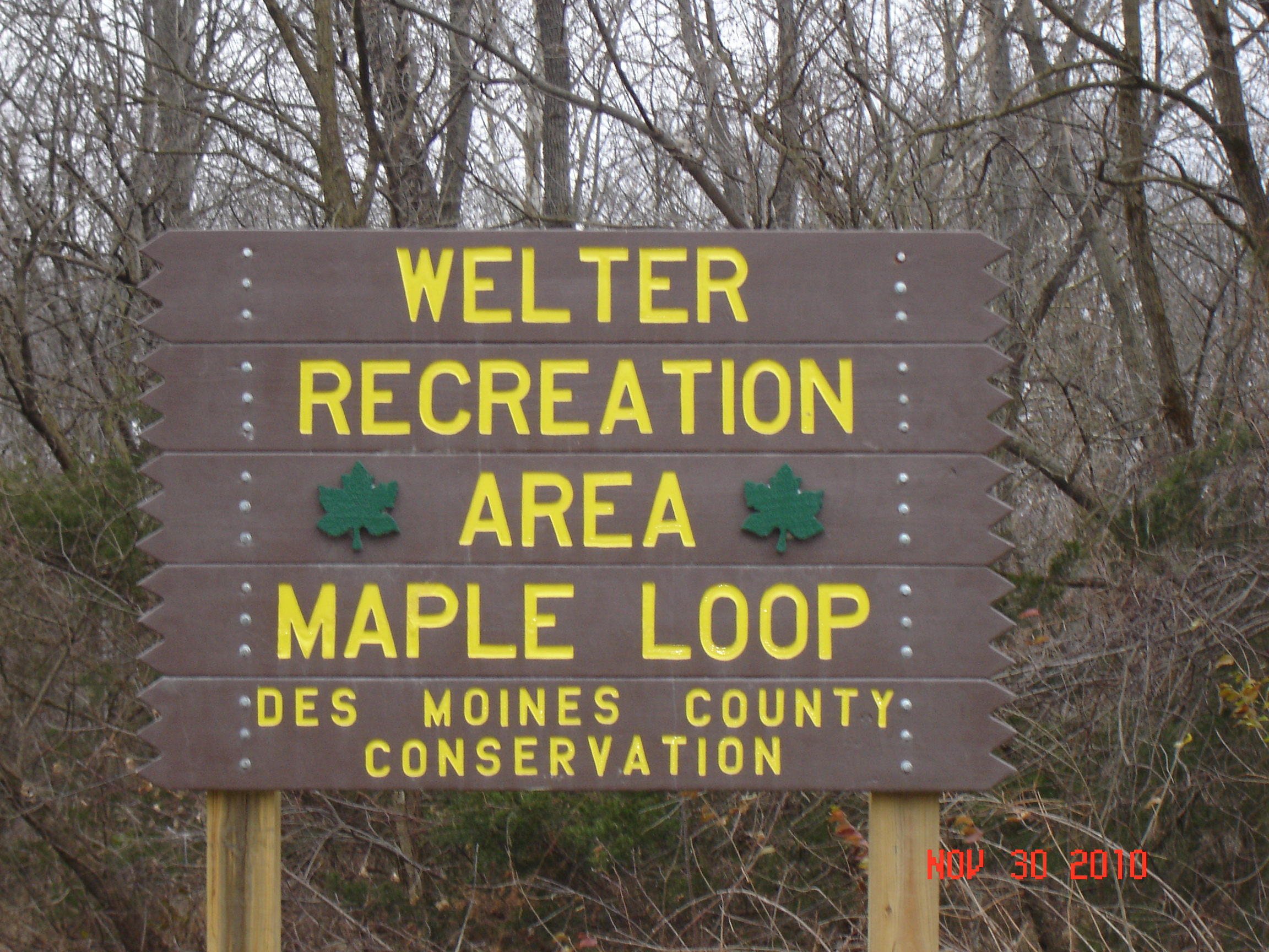 Maple Loop Sign