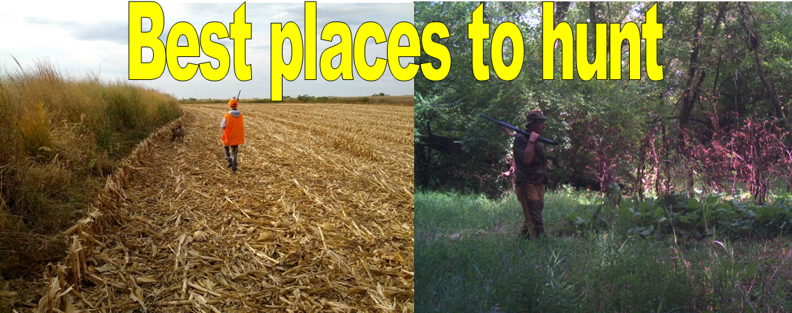 Best places to hunt
